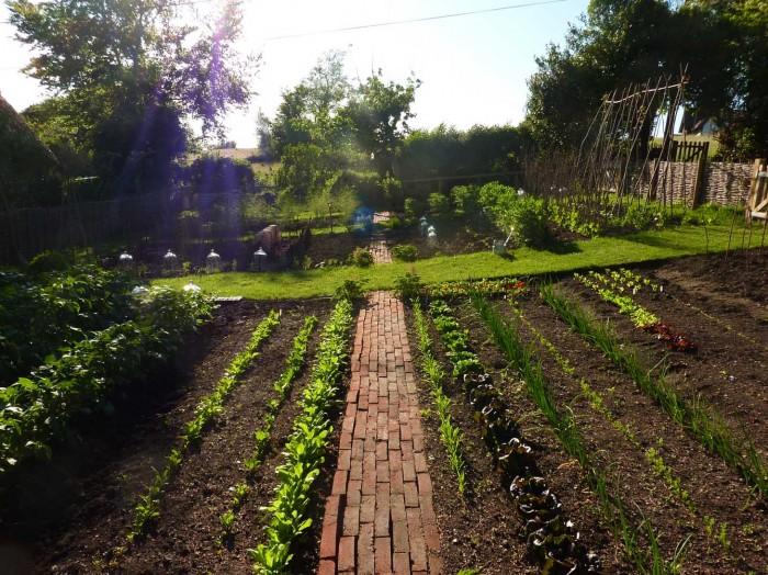 Vegetablegarden1